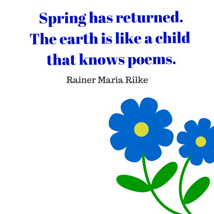 What is Spring like for you?