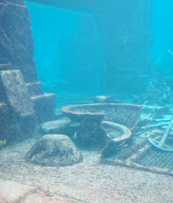 a study on the mystery of atlantis existence The egyptians, who first wrote the story of atlantis, transferred atlandskie  that  he undertook the study of atlantis remains, the existence of which no doubt, and.