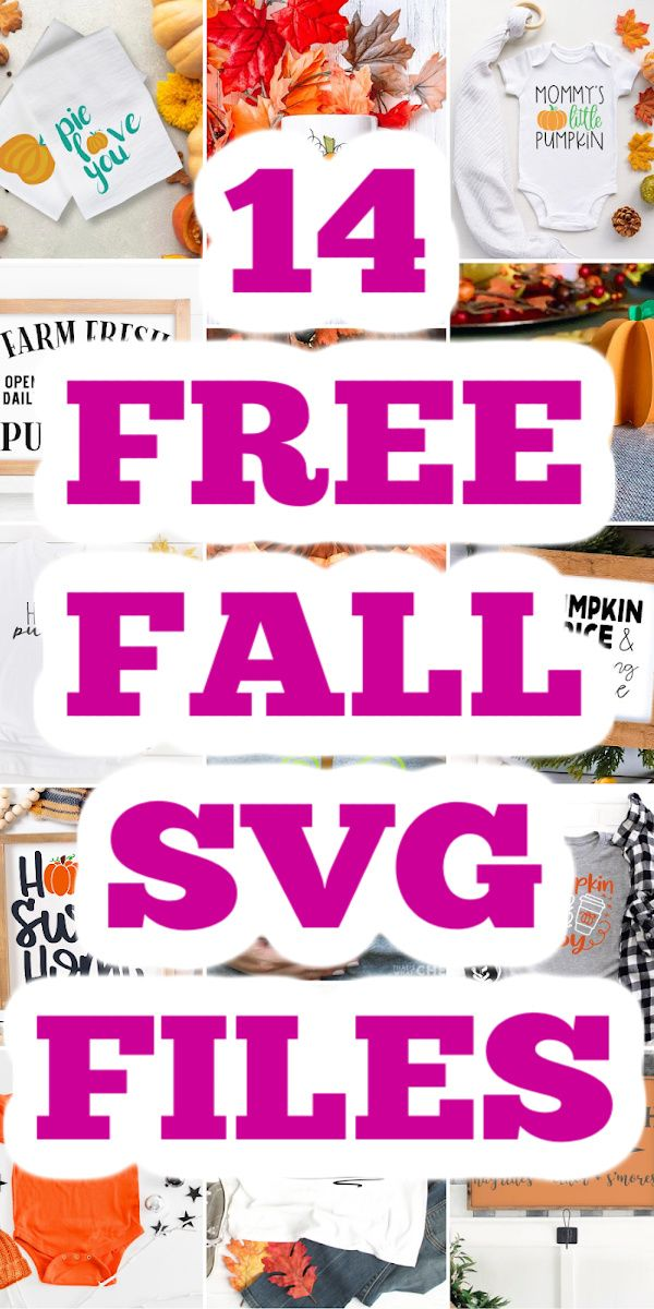 Download Your Free Pumpkin SVG and 13 More Files in 2020