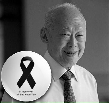 irememberSG 我记得新加坡: Remembering LKY