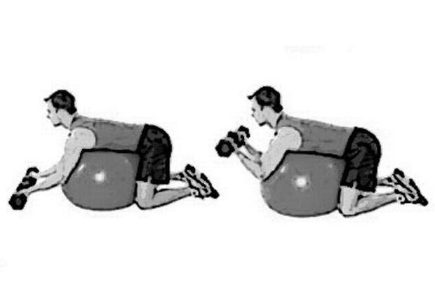 Αποτέλεσμα εικόνας για ασκησεις αλτηρες σε μπάλα