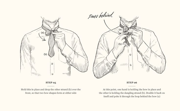 1000  images about bow tie on pinterest
