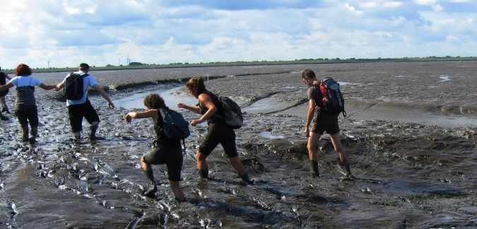 Wadlopen in Pieterburen is a wonderful experience! Learn all about how the dikes were built to create land and see fantastic views, all while trying not to fall in the silt! We laughed so hard the entire trip! About a 3 hour round trip and totally worth it!