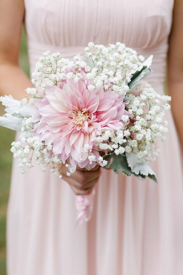 Bridesmaid's bouquet by Beautiful Blooms by Jen of baby's breath, blush dahlias and dusty miller. Photo by Brittany and Devin Photography.