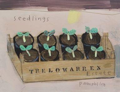 Seedlings by Elaine Pamphilon