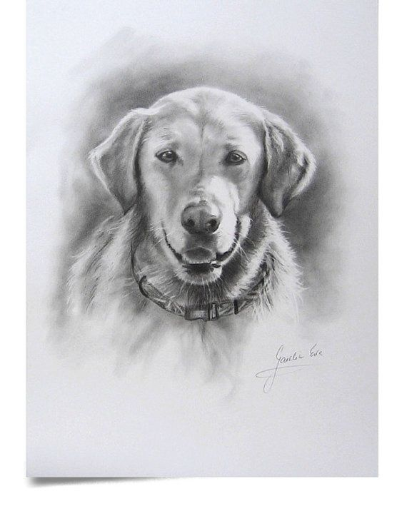 Custom 12 x 16 pencil drawing of your dog or cat by EwaGawlik