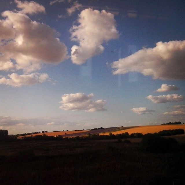 #hitchin #lavenderfarm #uk #hiliday #2015 #summer #travel #train #sky #memories