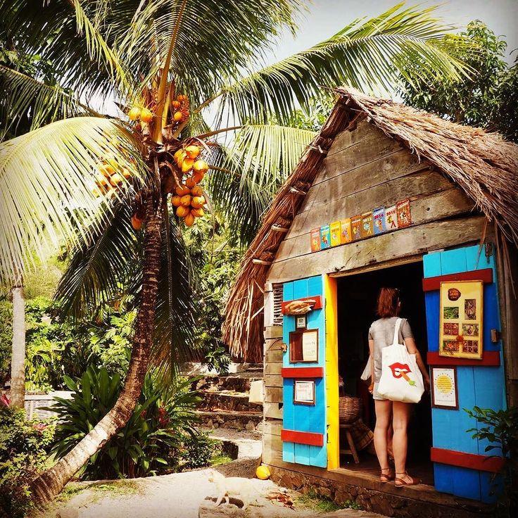 "#Madinina vue par @traveltastique: ""La Savane des esclaves #colorfull #martinique #palmtree #eatplants #interesting #sunshine #frenchlanguage #travel #learningeveryday #classmates #traveltastique"" #WeLike ! A voir sur Instagram : http://ift.tt/1TmE7nR"
