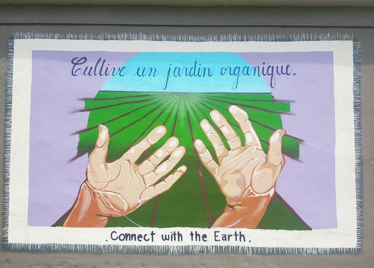 Downtown Santa Cruz Farmers Market Mural.   Connect with the Earth    #santacruz #farnersmarket #connectwiththeearth #santacruzfarmersmarkets #art #mural #downtownsantacruz #california #organic #organiclifestyle #organicfarming #foodblog Re-post by Hold With Hope