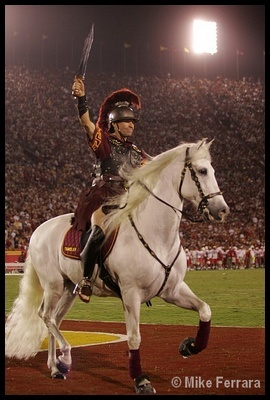 Tommy TrojanColleges Mascot, Trojans Warriors, Noble White, Regal Trojans, Future Projects, Football Games, White Horses, Famous Hors, Famous Colleges