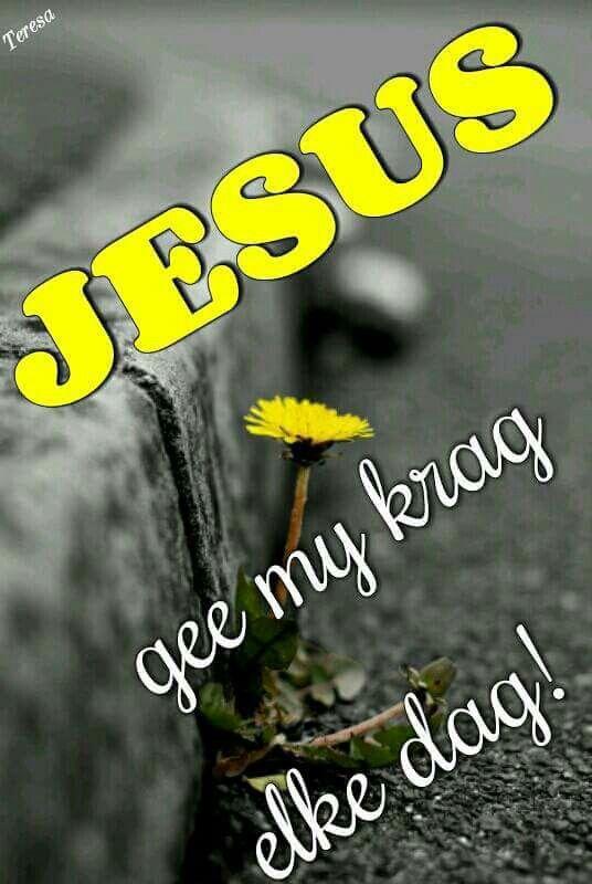 Jesus gee my krag, elke dag!