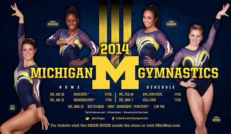 Michigan Gymnastics Mall Banners (2014)