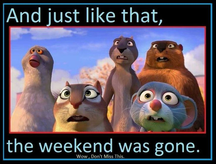 "And ""poof"" the weekend is gone.."