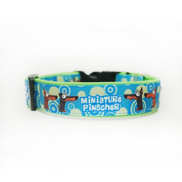 Obojek Blackberry | Collar by Blackberry #miniature #pinscher #collar #customized #pet #dog #blackberry #obojek #pes #lightblue #svetlemodra #odblackberry #byblackberry #blackberrycollars #obojkyblackberry #goodsfordogs