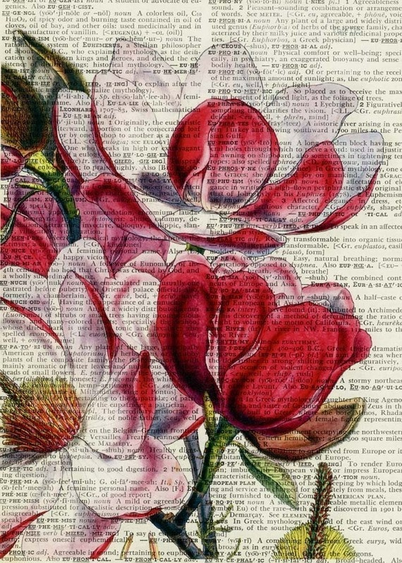 magnolias printed on old dictionary page