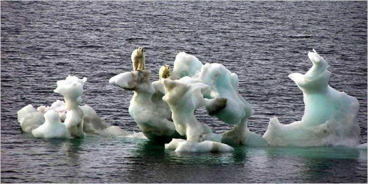 7 El aumento de las temperaturas derrite los hielos árticos, provocando la subida del nivel de las aguas en los océanos