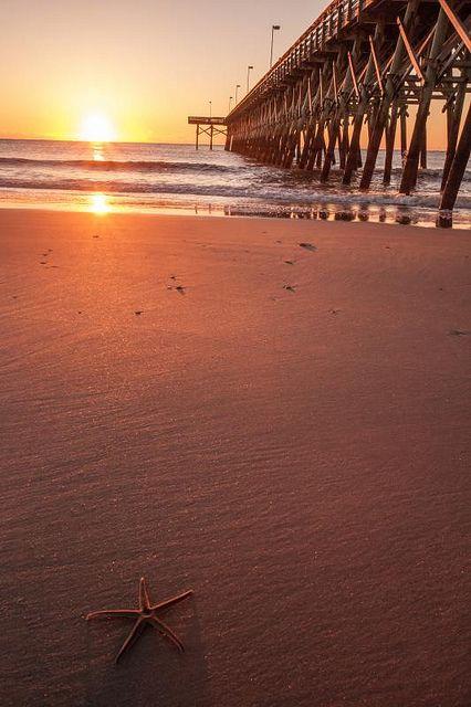 Sunset Starfish II   Sunrise at Myrtle Beach, South Carolina ~ Tabitha Hawk