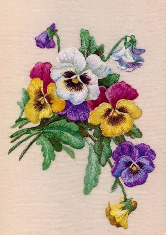 Violet & Pansy                                                                                                                                                                                 More