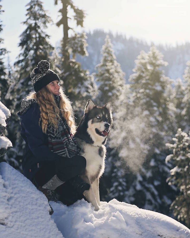 Ragazze salvato Husky, e dopo che il cane ha aiutata a sbarazzarsi del rapporto violento