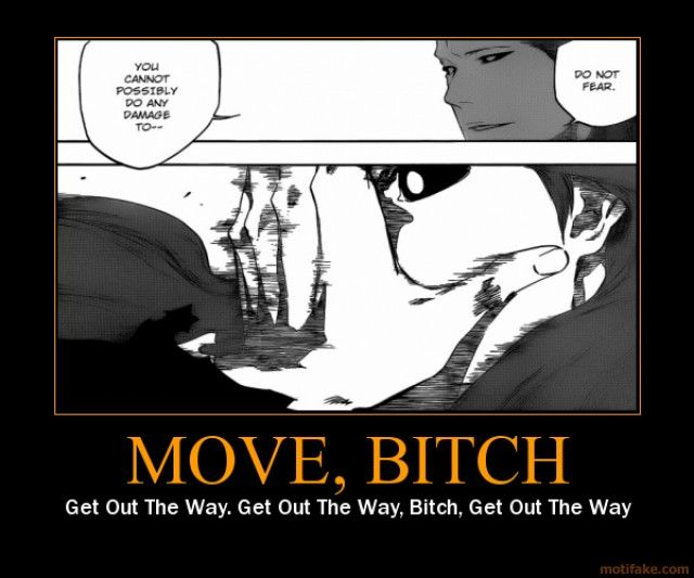 Funny Anime Motivational Posters | ... for sosuke aizen bleach anime manga kurosaki ichigo move bitch