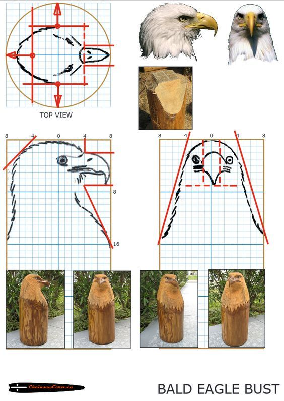 Chainsaw carving patterns free Eagle Bust. https://www.facebook.com/Bill.Sculptures.tronconneuse.Quebec: