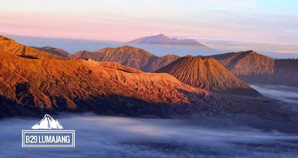 Puncak b29 Argosari Lumajang merupakan tempat wisata menarik diketinggian 2.900 mdpl dikawasan wisata Bromo yang serasa diatas awan. Simak ulasannya disini