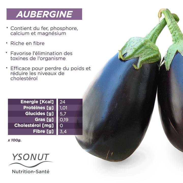 Cette saison est parfaite pour profitez de tout ce que nous apportent les aubergines et bien-sûr de toute leur saveur.