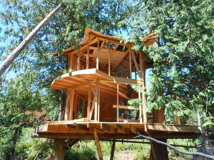 Nice Tree Houses 147 best treehouses, i want one! images on pinterest | treehouses