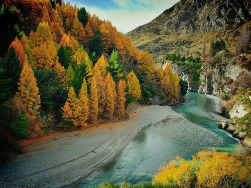 New Zealand. Tree colours are amazing.