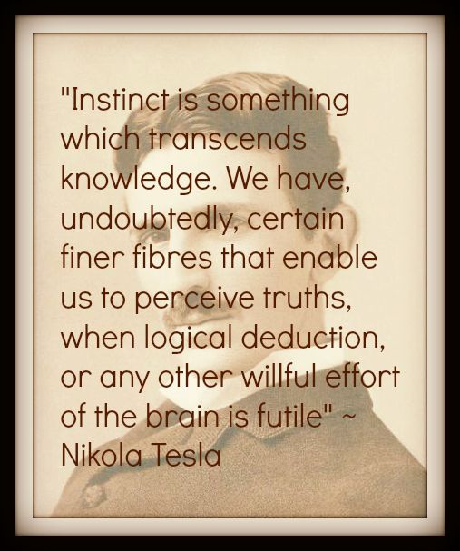 """""""Instinct is something which transcends knowledge"""". ~ Tesla"""