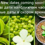 New dates of Flower Expo Ukraine 2018 coming soon!