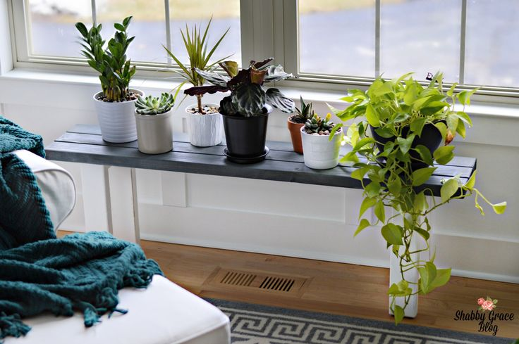 Looking for an inexpensive way to display your plants? This easy DIY 2X4 project is perfect for the beginner in DIY and power tools! I include each step in making this beautiful stand. I'm loving it!