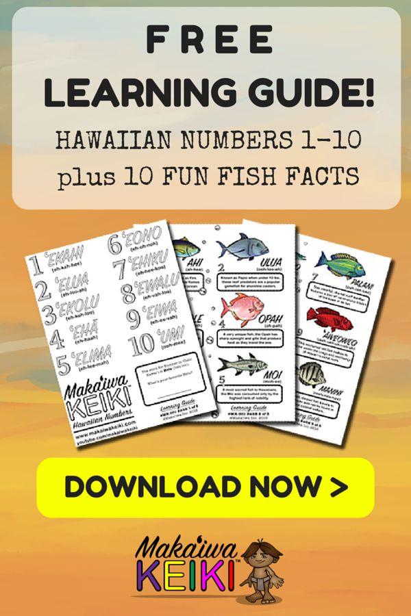 Hawaiian numbers | Hawaiian language | Aloha hawaii ...