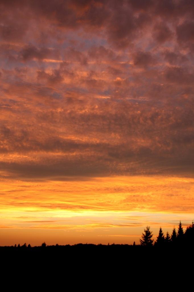 guysborough sunset - nova scotia