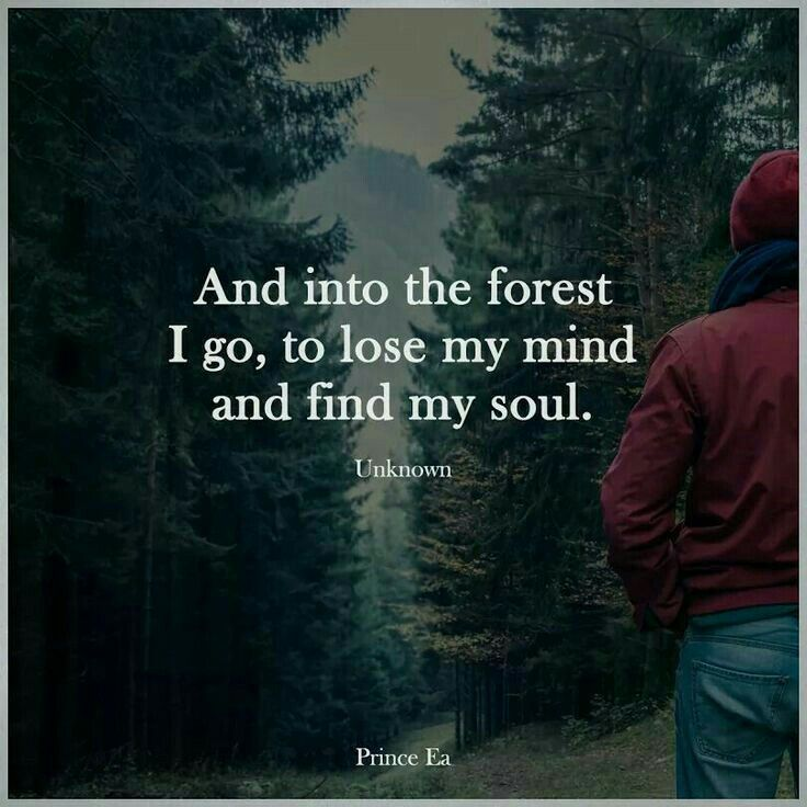 Embrace The Beauty And Serenity Of Nature Find Your Soul Have A Blessed Day Every Nature Quotes Inspirational Quotes Motivation Short Inspirational Quotes