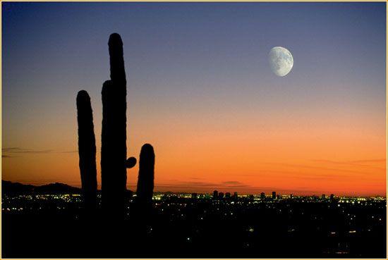 太陽の谷と呼ばれるアリゾナ州フェニックス。アリゾナ州フェニックスの名所