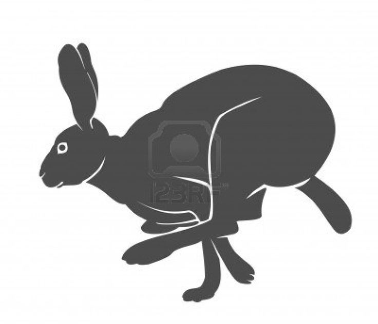 Silhouette of the running hare Stock Photo - 5997569