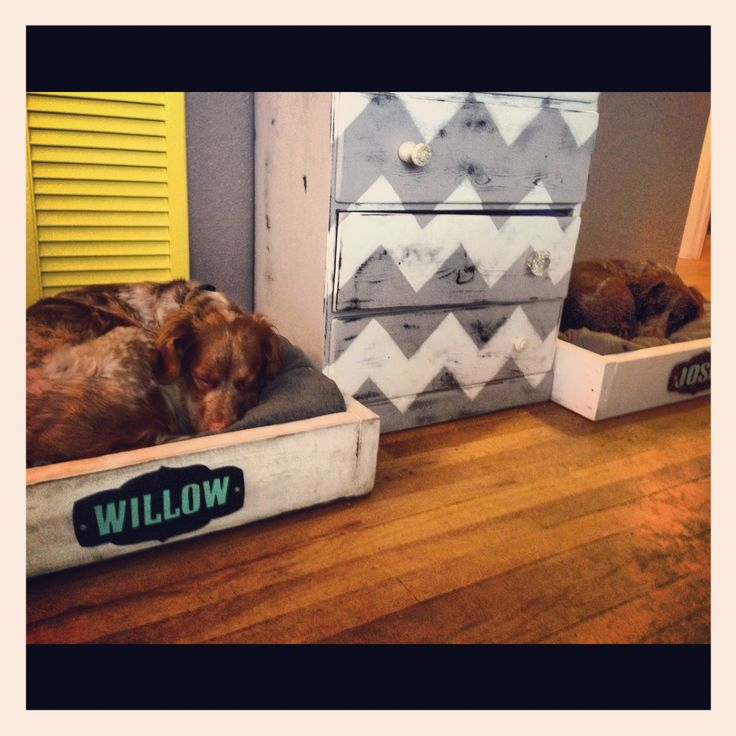 Diy Dog beds like the name tags. I want to do this for Kipper and Daisy!!