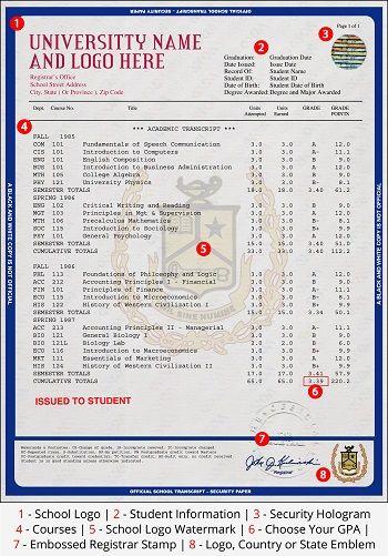 11 best malaysian diplomas  u0026 transcripts images on