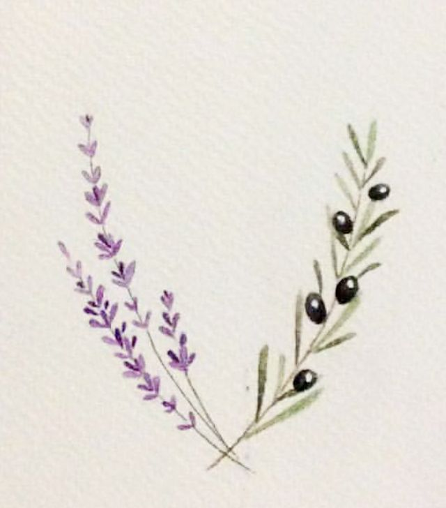 Lavender and Olive branch