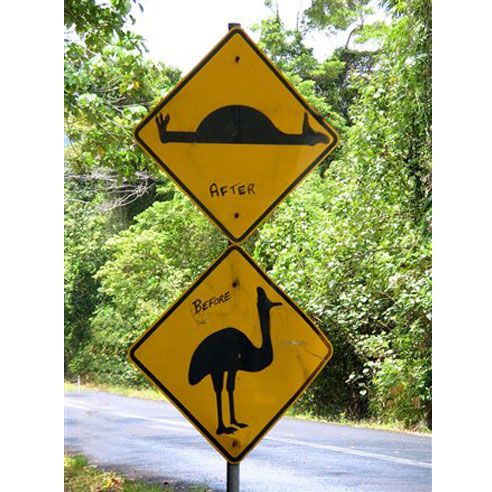 13 Funny Road Signs | Reader's Digest