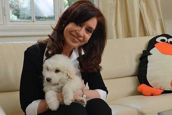 Un perro al rescate de Cristina Fernández