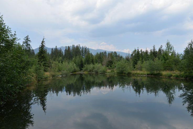 Woda, las, góry - miejsce odpoczynku i relaxu