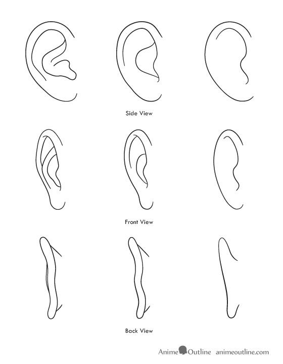 Anime/manga and realistic ears. -- Drawing tools, inspiration, tutorial