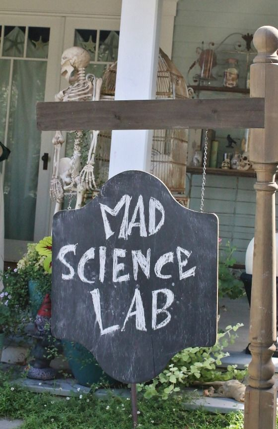 The Mad Scientist Lab Halloween Decorations                                                                                                                                                                                 More