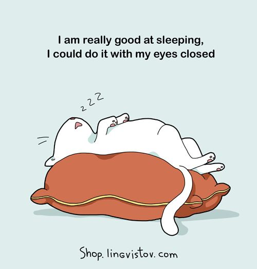 I am really good at sleeping. I could do it with my eyes closed.
