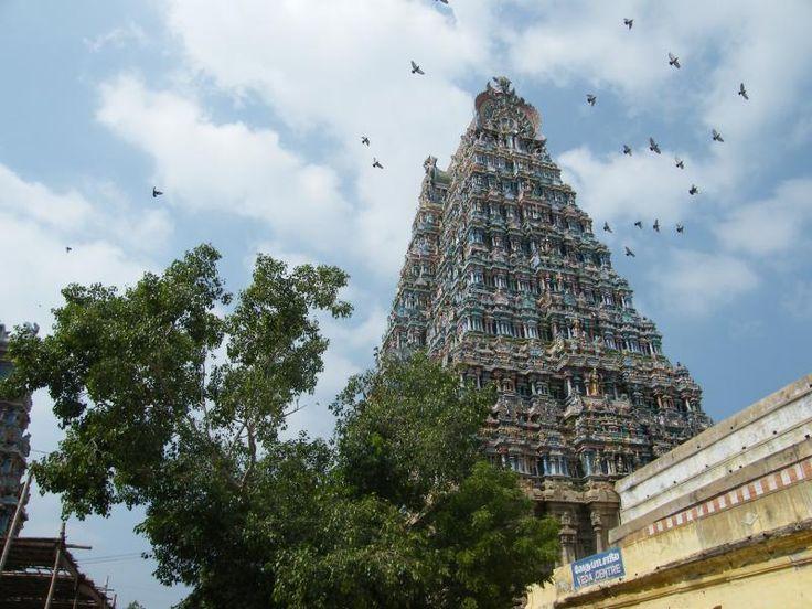 ユーラシア旅行社で行くインドツアー ドラヴィダ文化の中心地マドゥライのミナークシ寺院