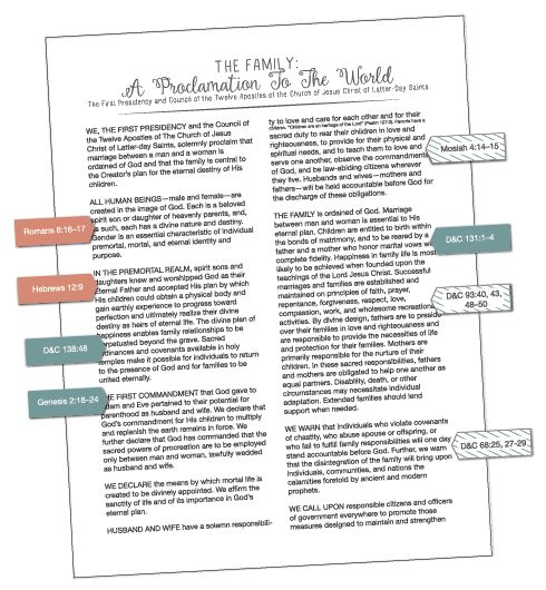 """""""Why is family important?"""" LDS Young Women August lesson helps. Lots of cute ideas including this fun activity to study the Family Proclamation! www.LatterDayVillage.com"""