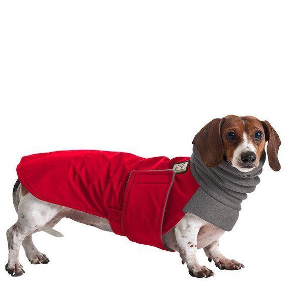 Miniature Dachshund Winter Coat Waterproof Dog Coat Dog Hoodie