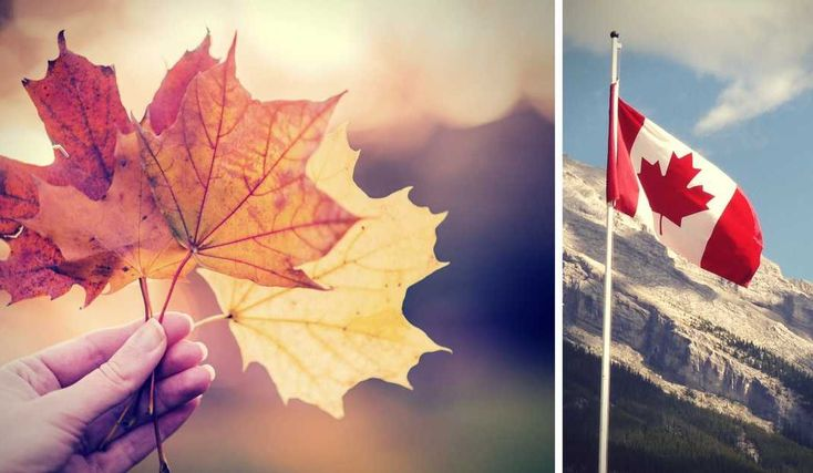 What you need to know about moving to Canada